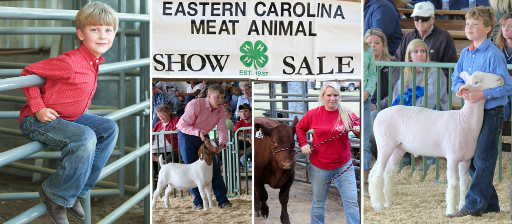 75th Annual 4H Meat Animal Show and Sale