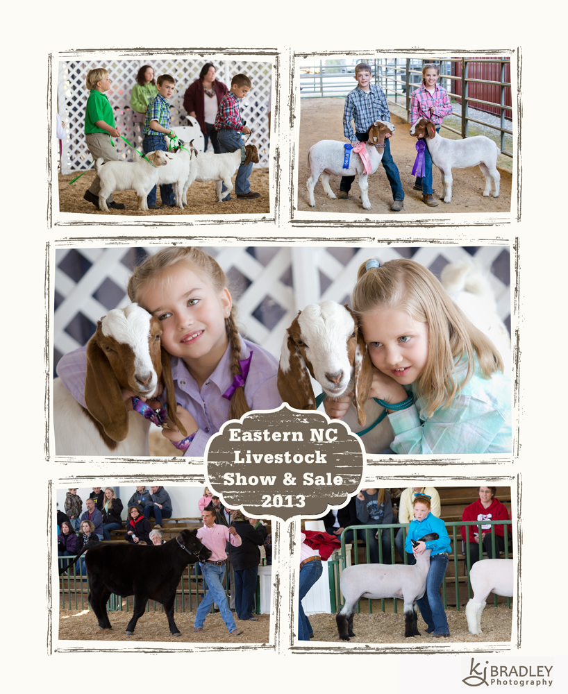 2013 Eastern NC Livestock Show & Sale
