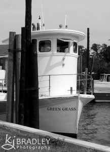 The Green Grass, ferry