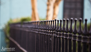 Charleston, SC fence