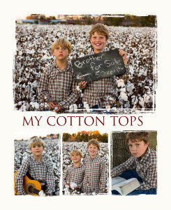 cotton_field_portraits_rocky_mt_nc_photographers