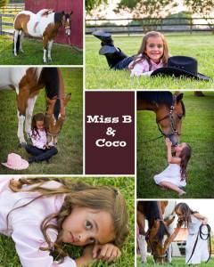Birthday Horse Portraits
